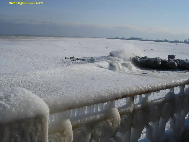 "Have you ever seen a frozen sea? Besides ""Day after tommorow"" movie?"
